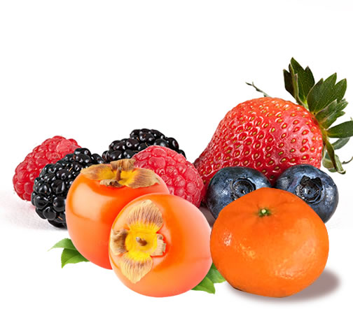 welcome fruits